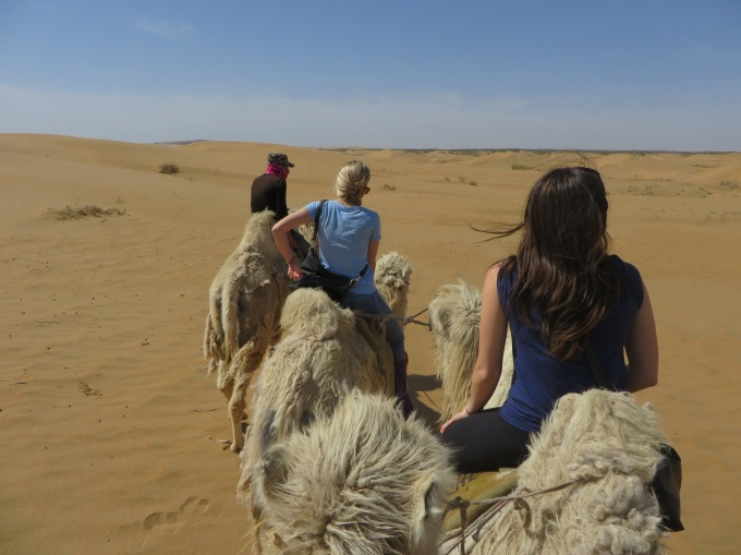 Camel riding in Inner Mongolia, Kimberly & Taylor Hetherington | Art Therapy with Kimberly