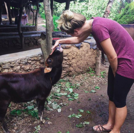 petting cows in Rishikesh, India | Kimberly Hetherington | Art Therapy with Kimberly