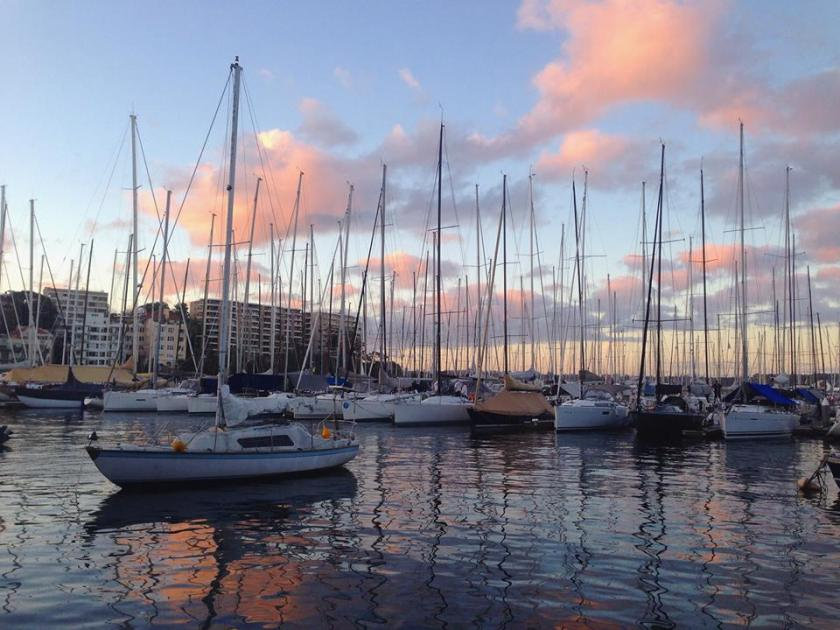 Sunset at Elizabeth Bay | Life After Elizabeth