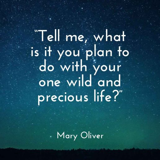 """Tell me what is you plan to do with your one wild and precious life?"" Mary Oliver 